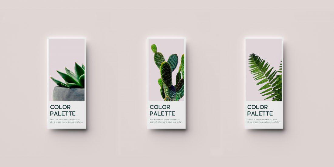 luam-tipografia-patricia-castro-gratuita-color-palette