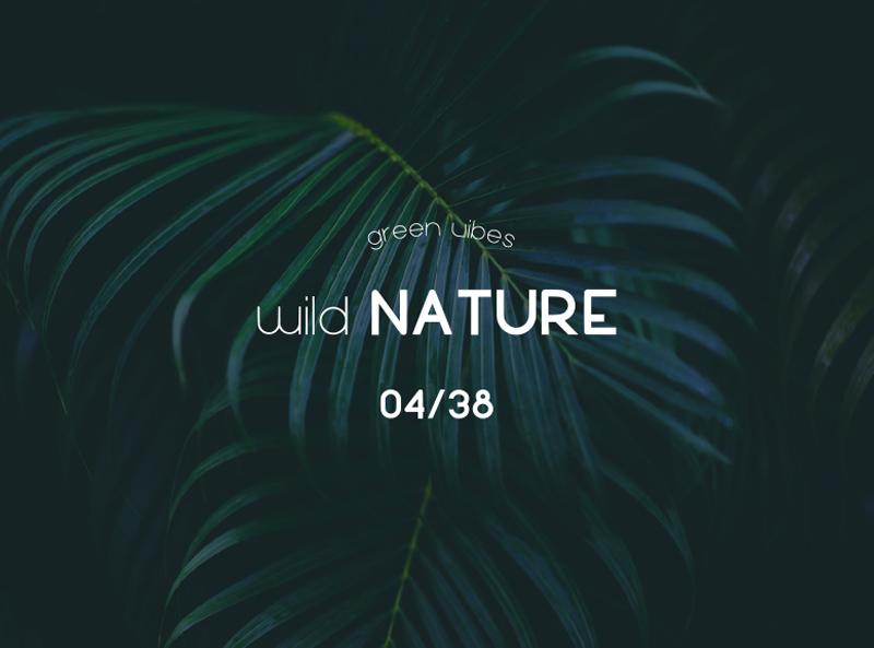 luam-tipografia-patricia-castro-gratuita-ejemplo-composicion-wild-nature